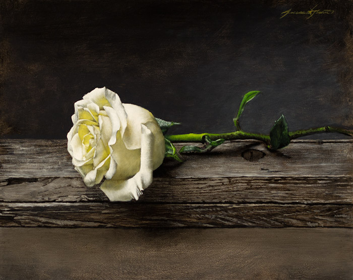 A painting of a single white rose in a still life style setting. The white rose rests upon two weathered pieces of wood against a dark grey background.